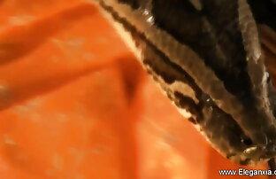 बेब बालों वाली बिल्ली और बालों गड्ढों और इंग्लिश सेक्सी ब्लू वीडियो बैटिंग के लिए संभोग सुख